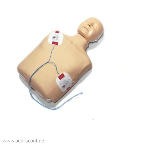 LLaerdal Little anne QCPR Trainingstorso